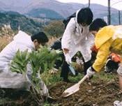 白川の植樹2.jpg
